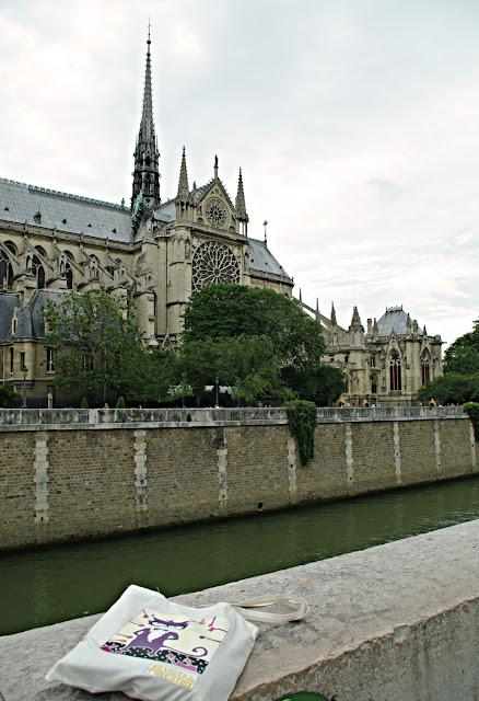Notre Damme poze frumoase  Paris images