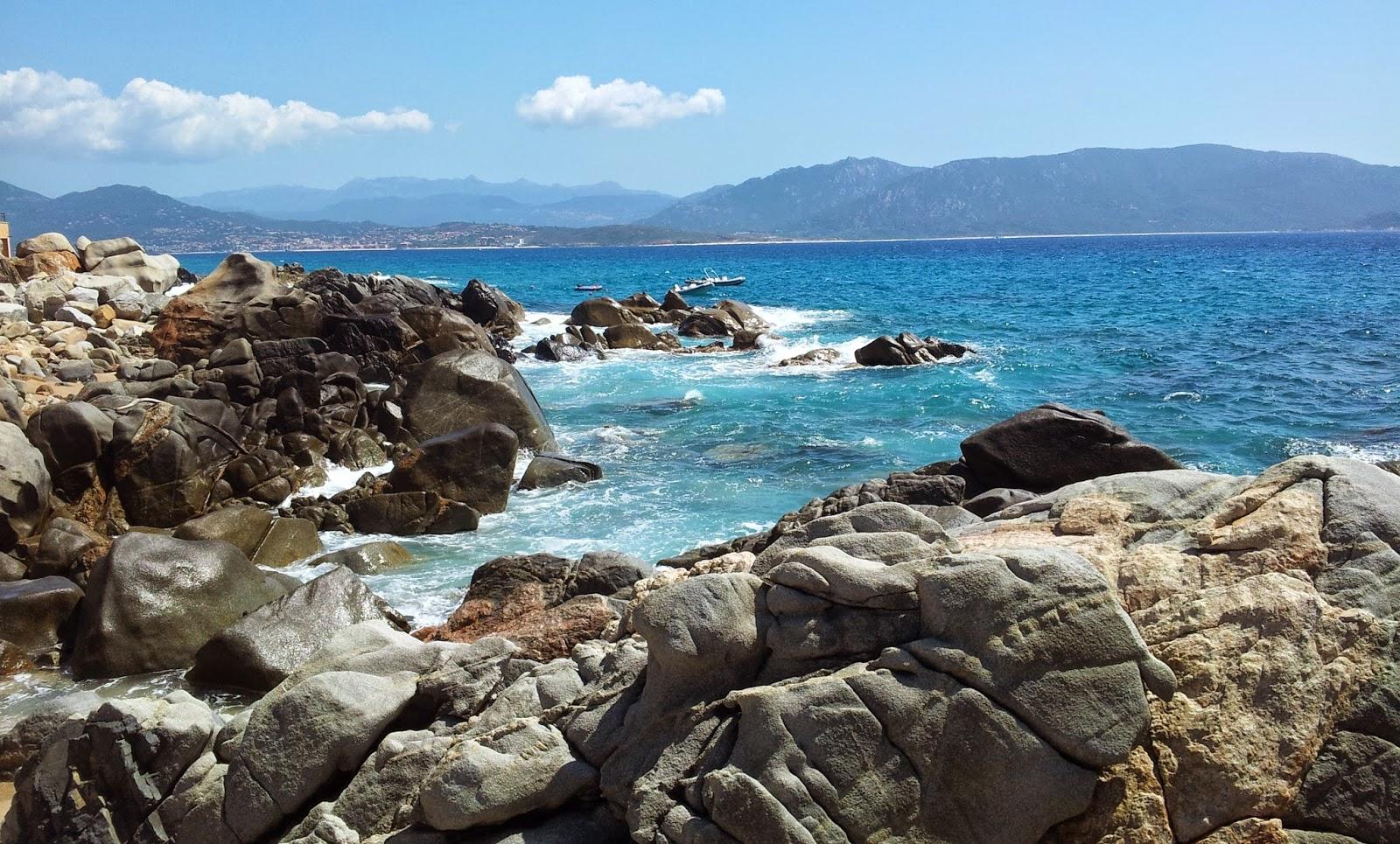Quallen auf Korsika