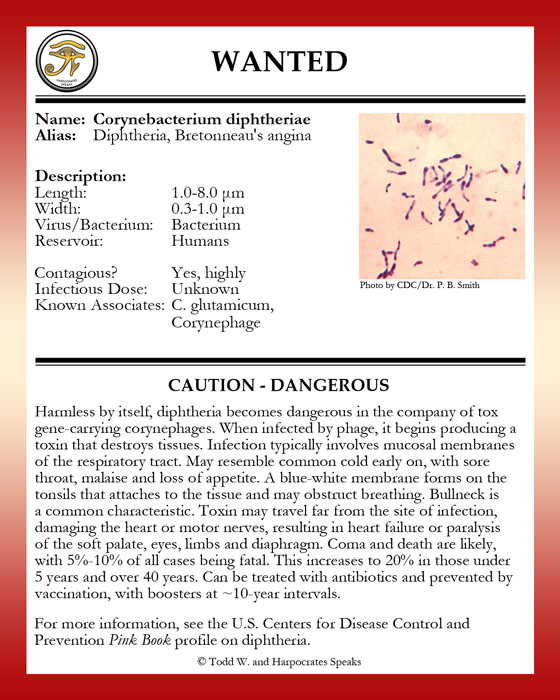 the description of diphtheria cyronebacterium diphtheriae Infectious agent: corynebacterium diphtheriae description of illness: diphtheria is a rare acute bacterial disease preventable through vaccinationimportant sites of infection are the respiratory mucosa (respiratory diphtheria) and the skin (cutaneous diphtheria.