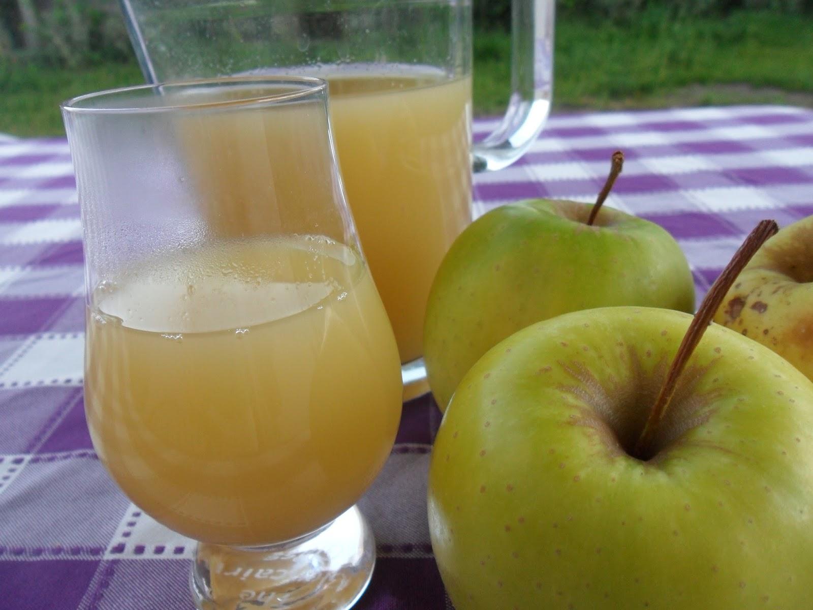 Jus de pomme maison au thermomix environ 750ml - Jus de pomme maison ...