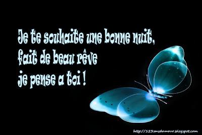 sms d'amour bonne nuit