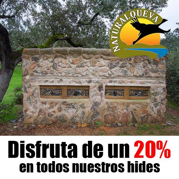 http://naturalqueva.com/