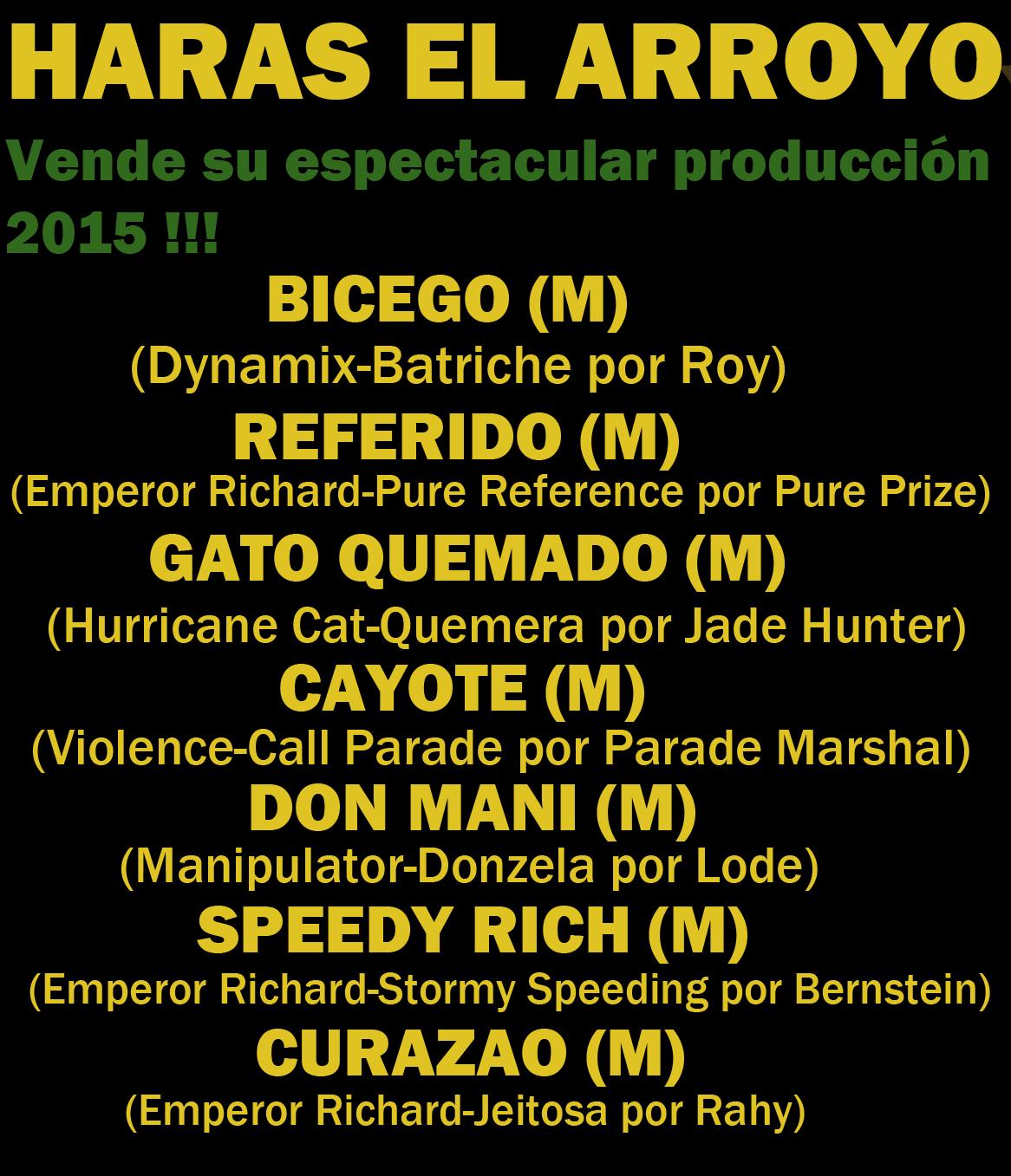 HARAS EL ARROYO 1