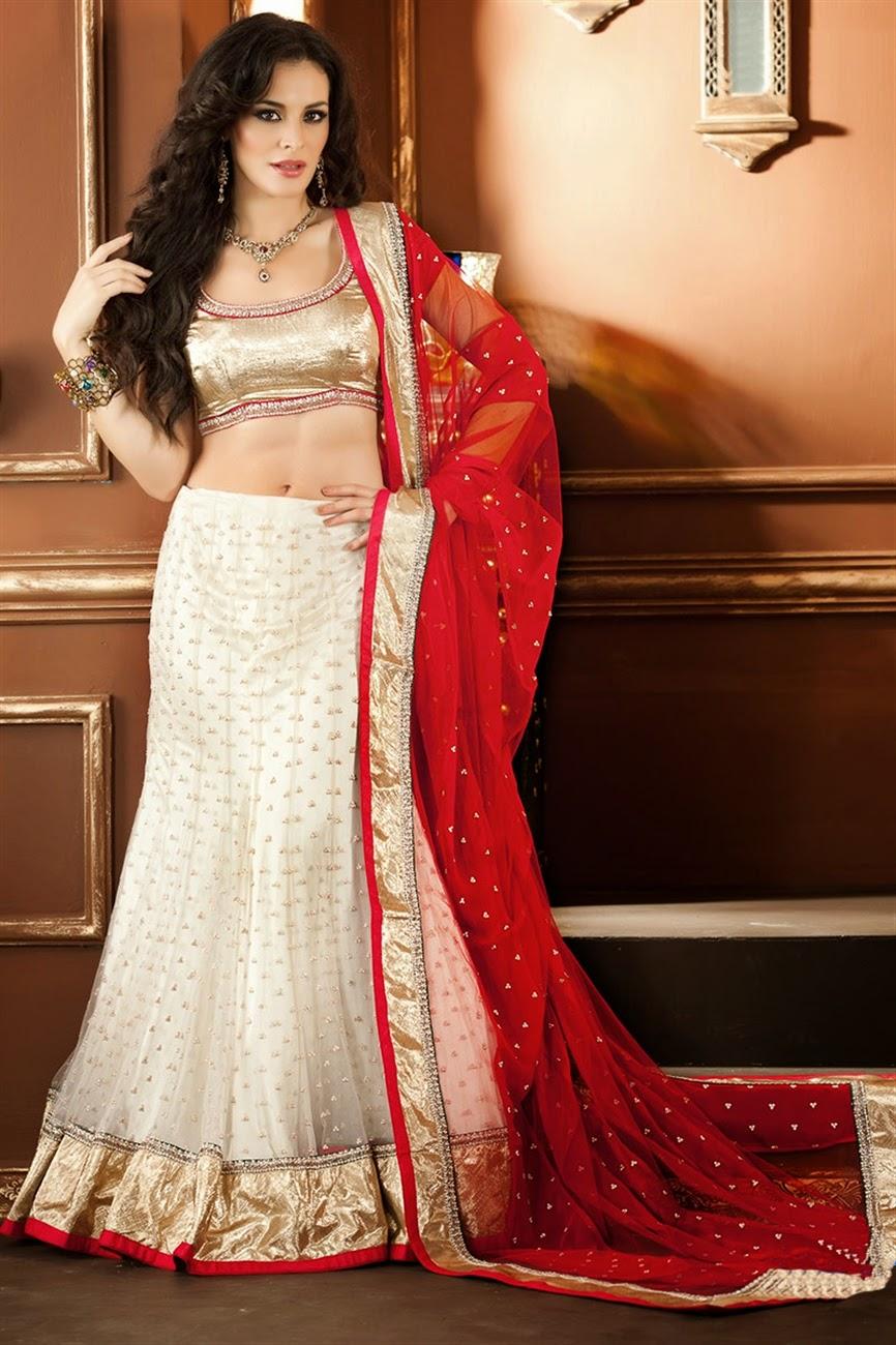 albarino net: Bollywood Designer Bridal Wear Lehenga Choli Sabyasachi Anarkali 2014