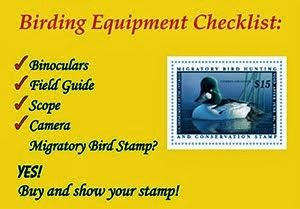Why should you buy a Duck Stamp?