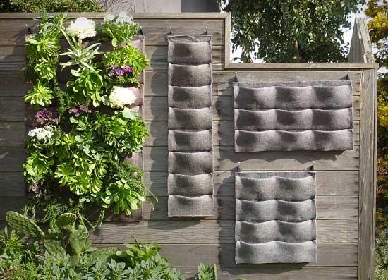 Vertical garden for Vertical garden design