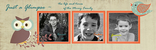 Just a glimpse ~ the life and times of the 5 McCoy's