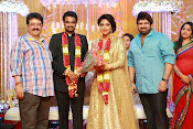 Amala paul vijay reception-thumbnail-60