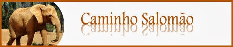 O CAMINHO SALOMÃO