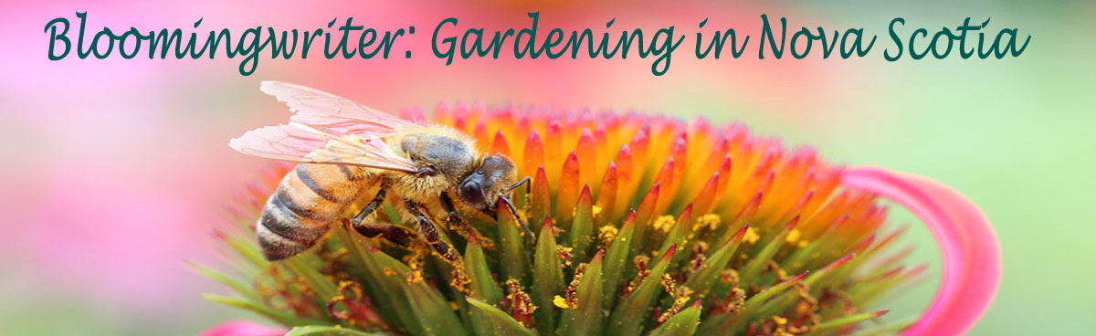 Bloomingwriter: Gardening in Nova Scotia