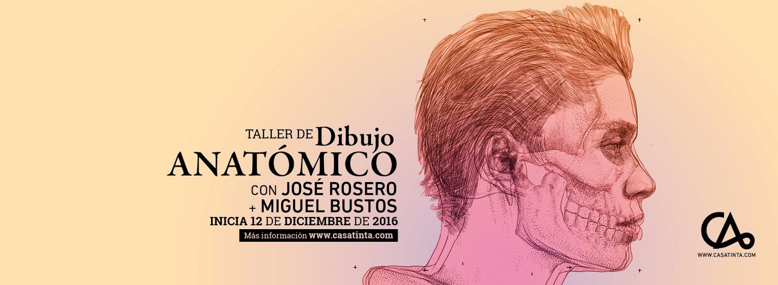 DIBUJO ANATÓMICO // 12 de dic