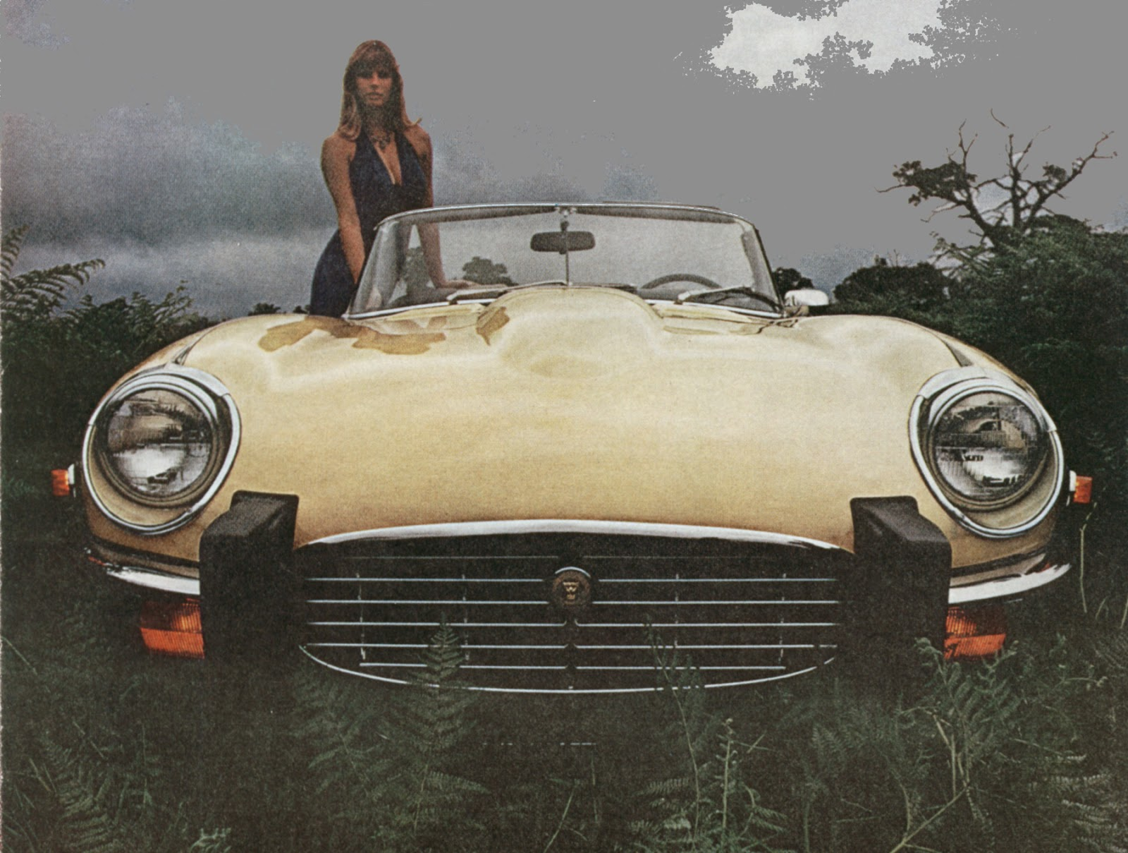 Lost Star Cars: Tina Turner\'s 1973 Jaguar XKE | phscollectorcarworld
