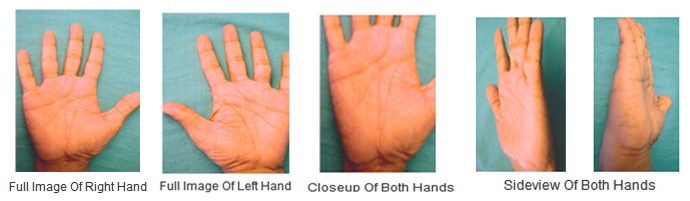 Marriage Line On Hand Indicates Divorce And Separation Palmistry
