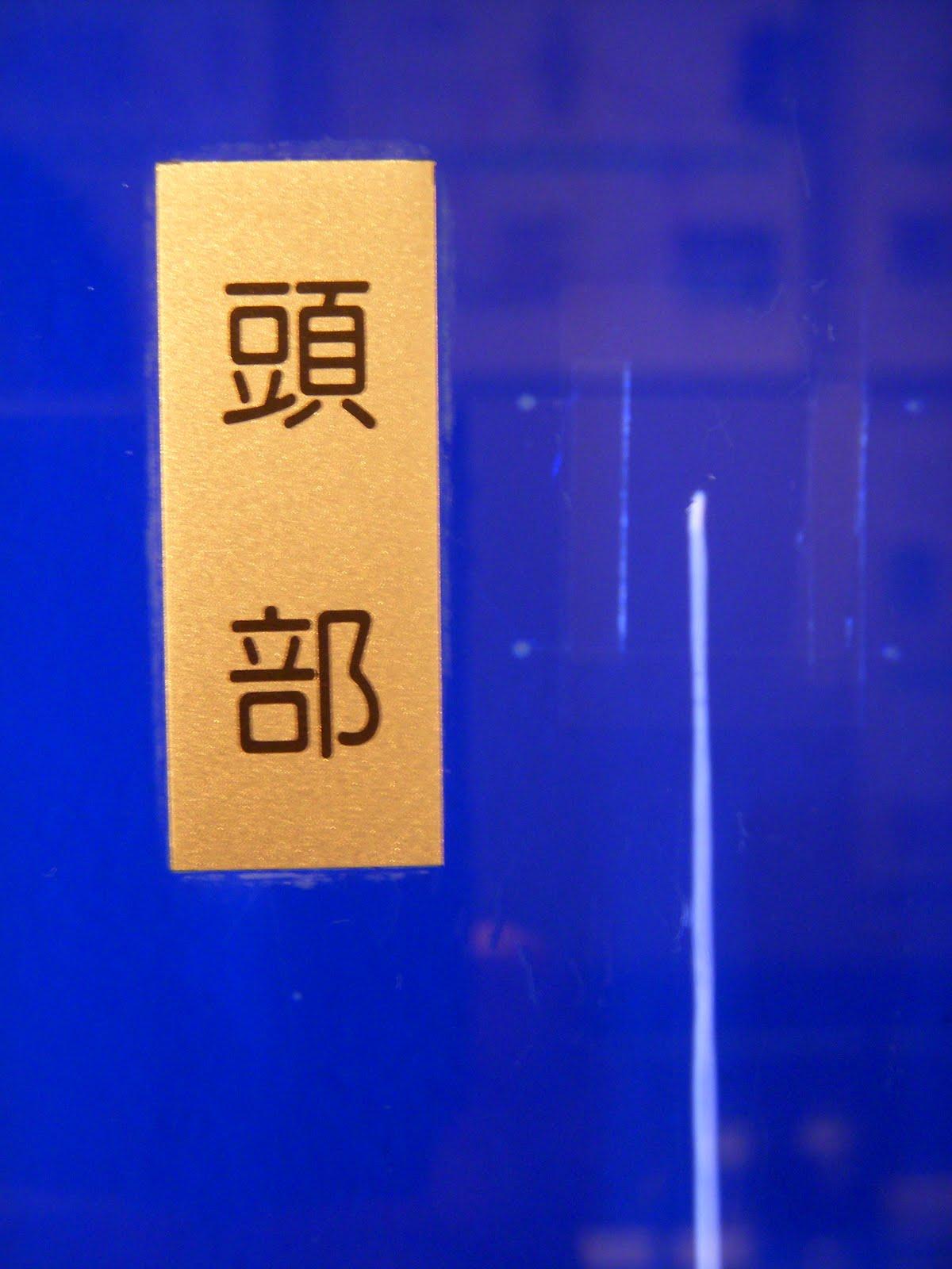 日本海裂頭条虫