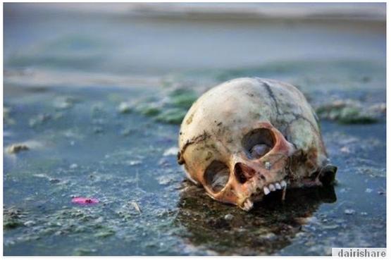 Tahukah Anda Fakta Mengerikan Sungai Yang Di Anggap Suci Di India