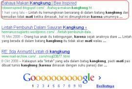 Hasil Google Search Pertama Google Tak Peduli Backlink dan Pagerank