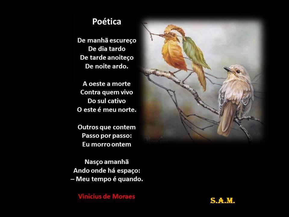Fabuloso ACADEMIA DE LETRAS DO BRASIL-SEÇÃO MINAS GERAIS-(21-9-2010  PR94