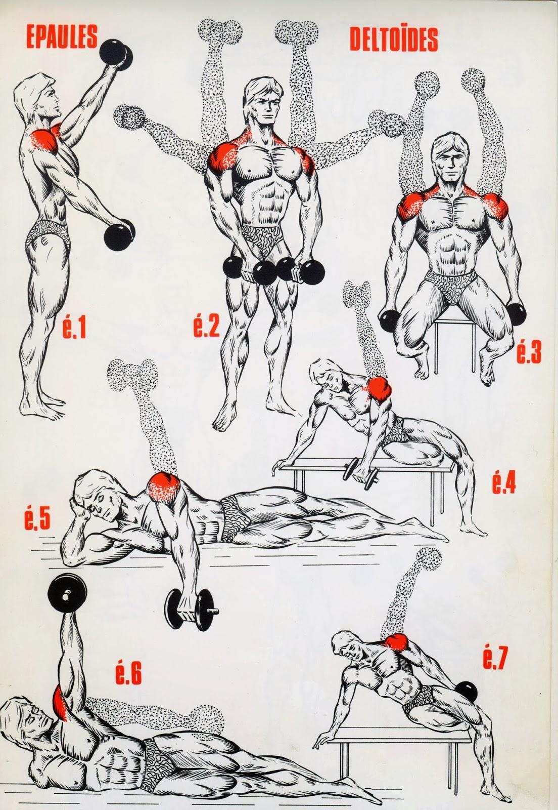 Très Muscle & Fitness : Programme musculation épaules GM19