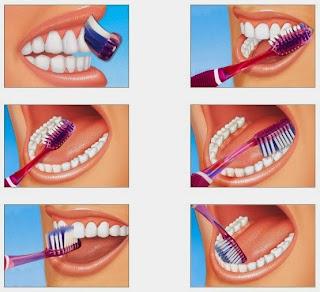 cara berus gigi, berus gigi
