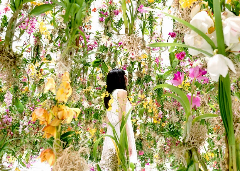 floating flower garden teamlab