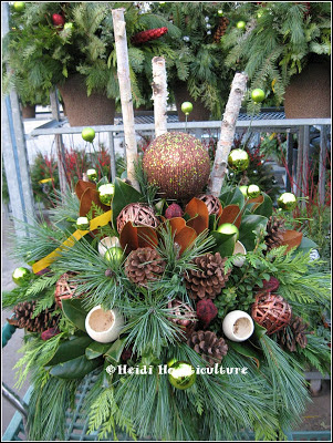 Heidi Horticulture Outdoor Christmas Container Little Fun #2: Blog Nov 25 1