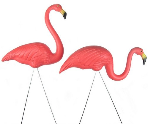 the plastic pink flamingo Results 1 - 48 of 699  10 pack pink flamingo plastic yard garden lawn art ornament statue  decoration  your monitor settings may affect the color that you see.