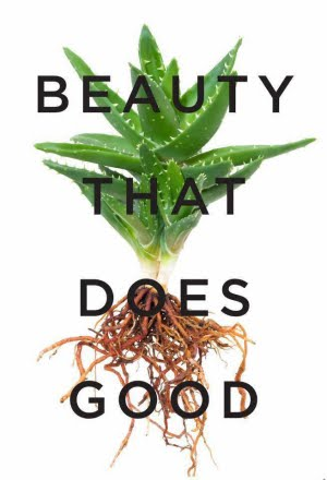 Plant-Based Skin Care