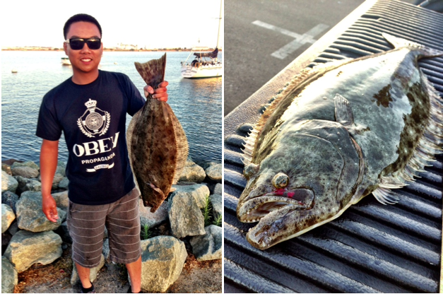 Socal fish n tips fishing reports for California halibut fishing