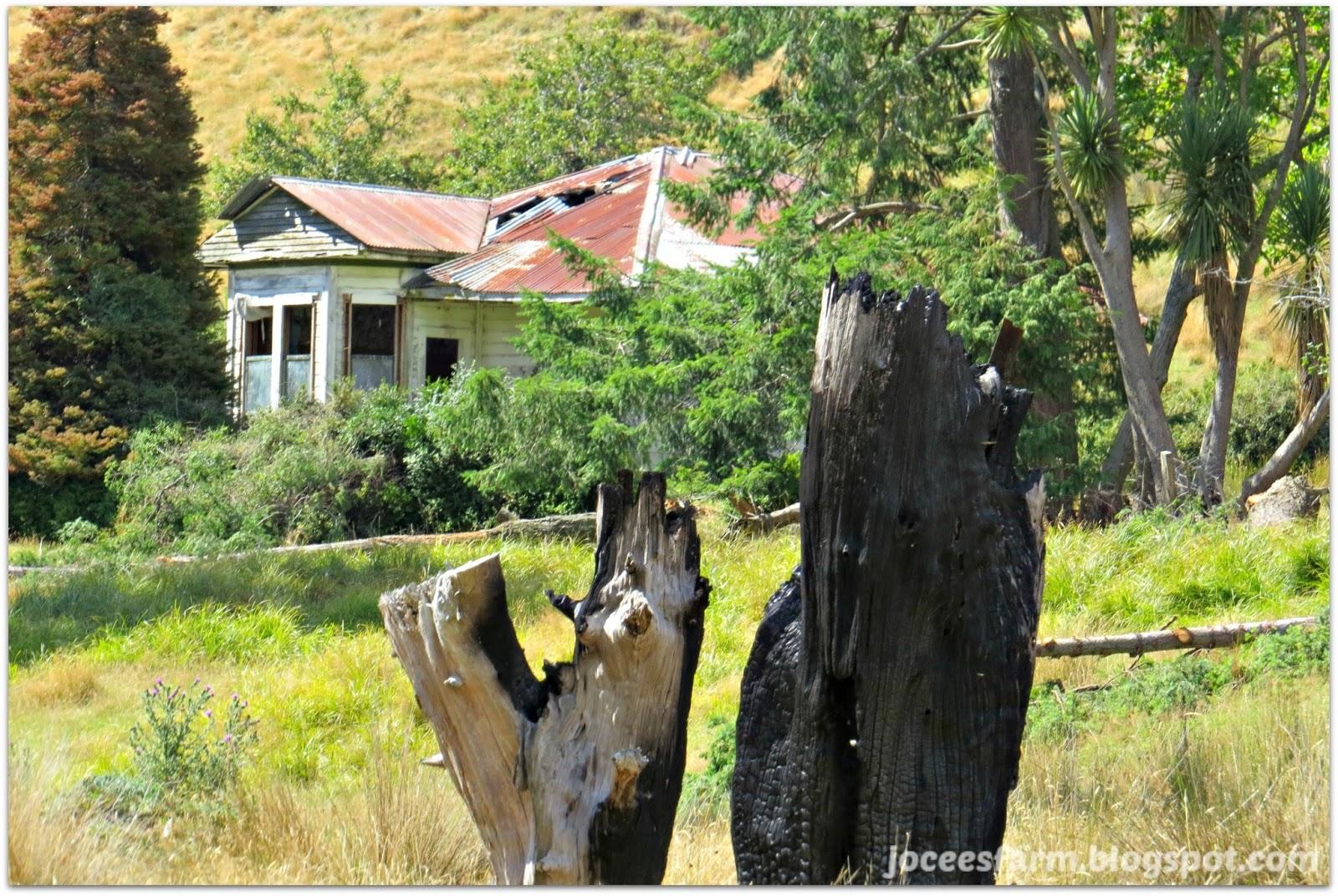 Abandoned | joceesfarm.blogspot.com