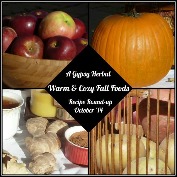 Warm & Cozy Fall Foods & Recipes by A Gypsy Herbal - featured at Natural Family Friday