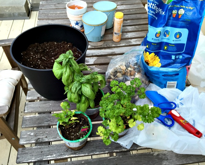 deck gardening supplies and herbs -Cordier Events