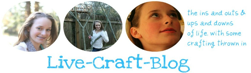 Live.Craft.Blog