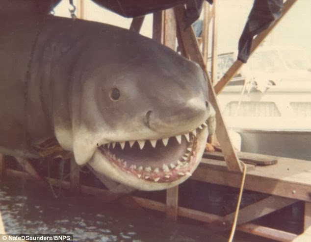 Jaws Rubber Shark Toy : Rare jaws photos to be auctioned for