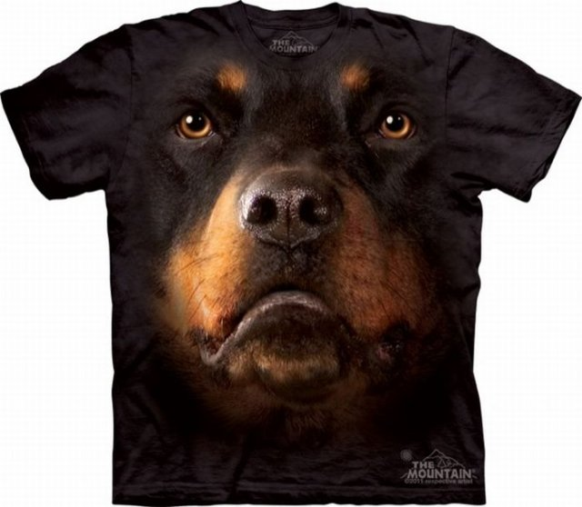 http://3.bp.blogspot.com/-E7hFcLccoVs/Tb1FQBAPCQI/AAAAAAAAFE8/CXaYkeNw5L8/s1600/Animals%2BFaces%2BOn%2BT.Shirts%2B%252818%2529.jpg