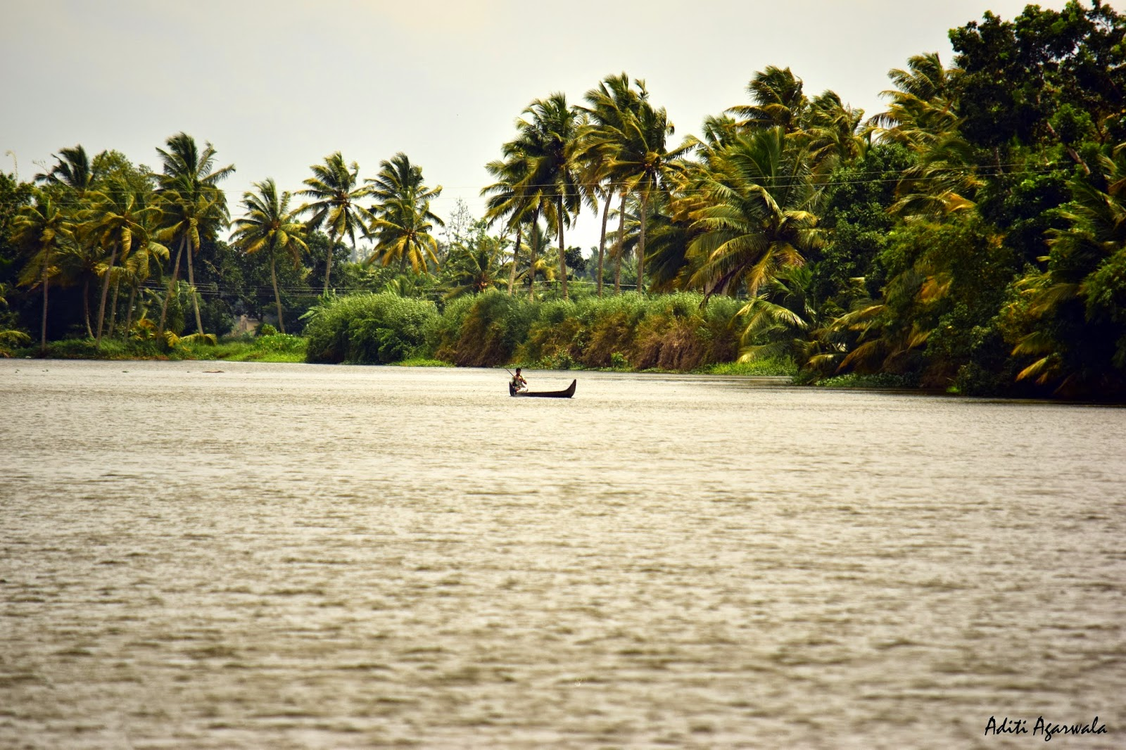 Fisherman on the backwaters of Allepey, Kerala