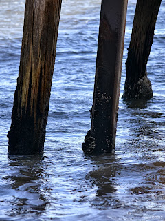 jetty support