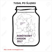 ROBÓTKOWY HASIOK 2017