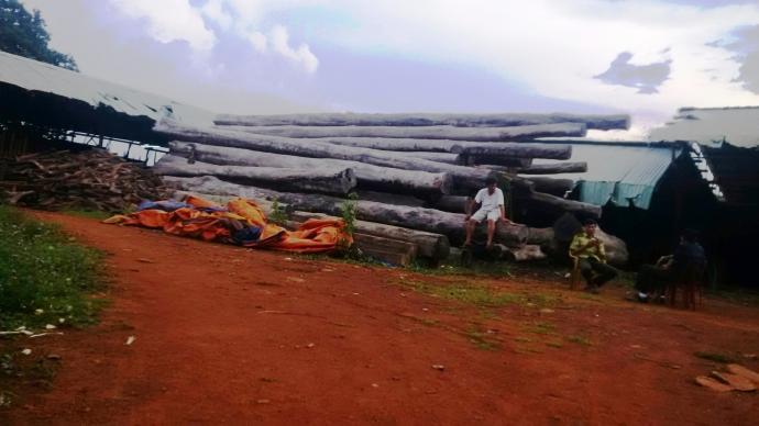 Gia Lai: Doanh nghiệp gỗ phủ định việc Bộ Công an kiểm tra các xưởng gỗ