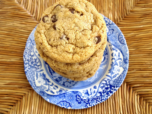 Chocolate Chip Peanut Butter Oatmeal Cookies | Pavlova's Dog