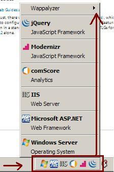 Find list of software installed on a website