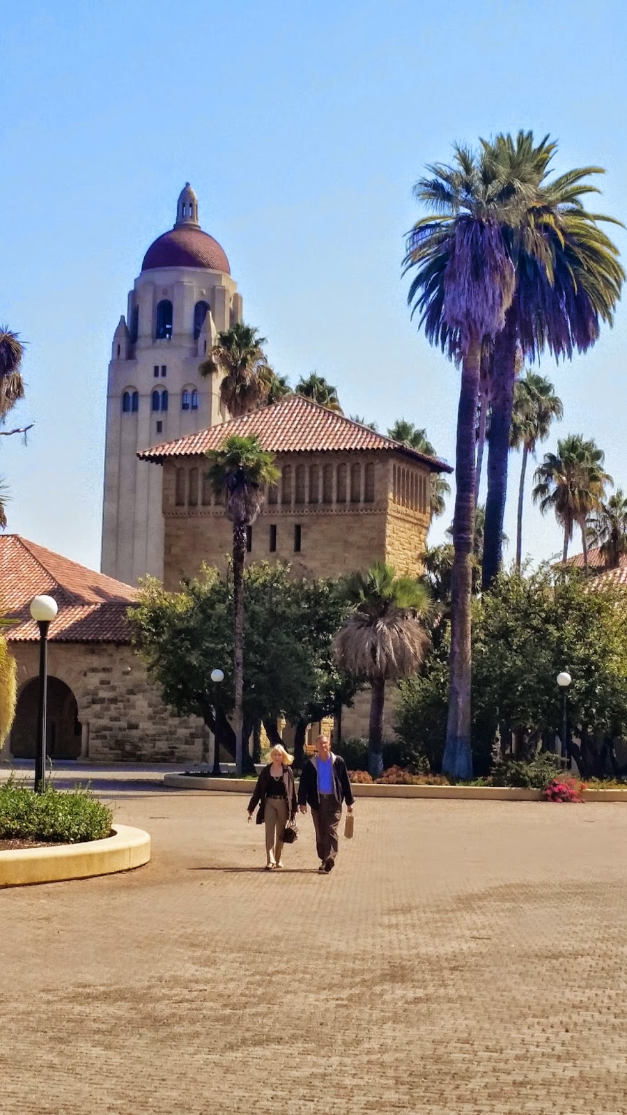 stanford university jack off club