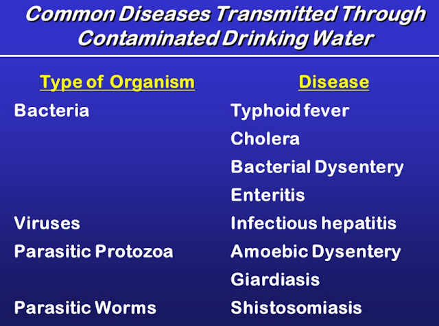 Causes and Types of Dysentery