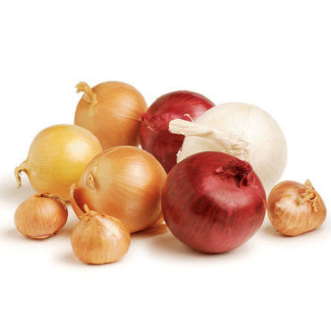 Onions for Earaches