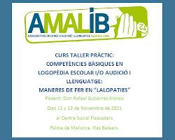 Primer curs organitzat per AMALIB