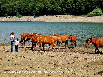 Visitare il Lago Paduli