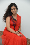 Samatha photos at SSD music launch-thumbnail-9