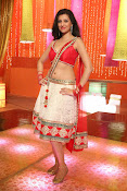 Hamsha Nandini Hot Stills-thumbnail-1