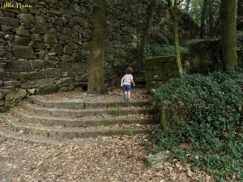 Bosque encantado ocio infantil plan con niños