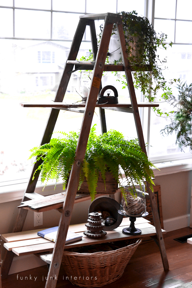 Ladder plant stand via Funky Junk Interiors