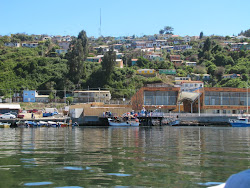 Más Talcahuano